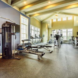 Tapestry Long Farm, exercise room